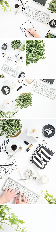 Greenery Styled Stock Photography, Pantone 2017, Black and White styled stock, Cristina Elisa Photography LLC